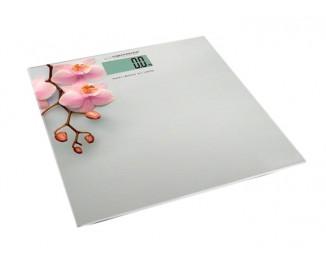 Весы Esperanza EBS010