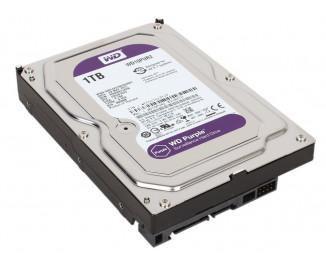Жесткий диск 1 TB WD Purple (WD10PURZ)